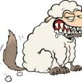 wolf-schaapskleren-puur-fit-judith-rolf-smaakversterker-e-621