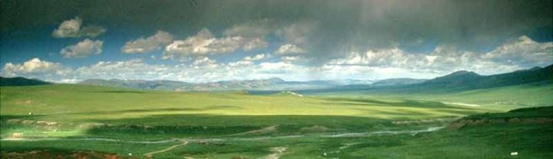 Magnesiumvlokken Himalaya Tibetaans plat